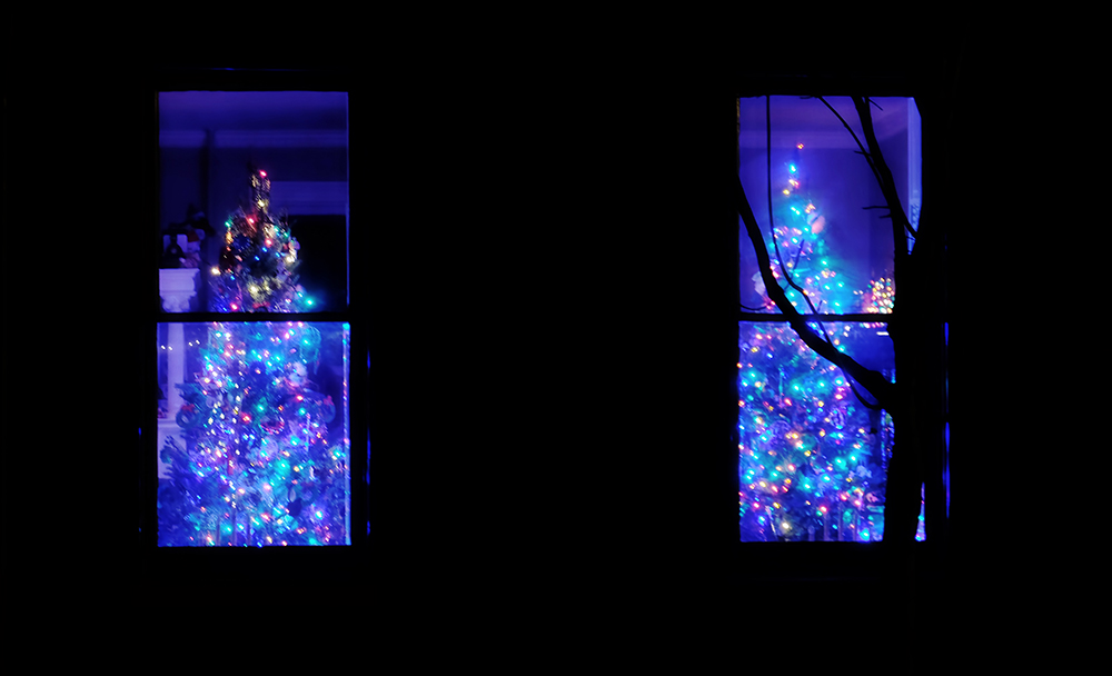 Double_Christmas_trees_window