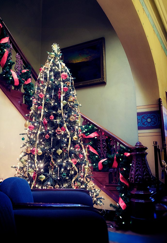 frederick_city_hall_tree
